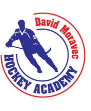 David Moravec Hockey Academy